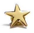 A five-pointed gold star pin.